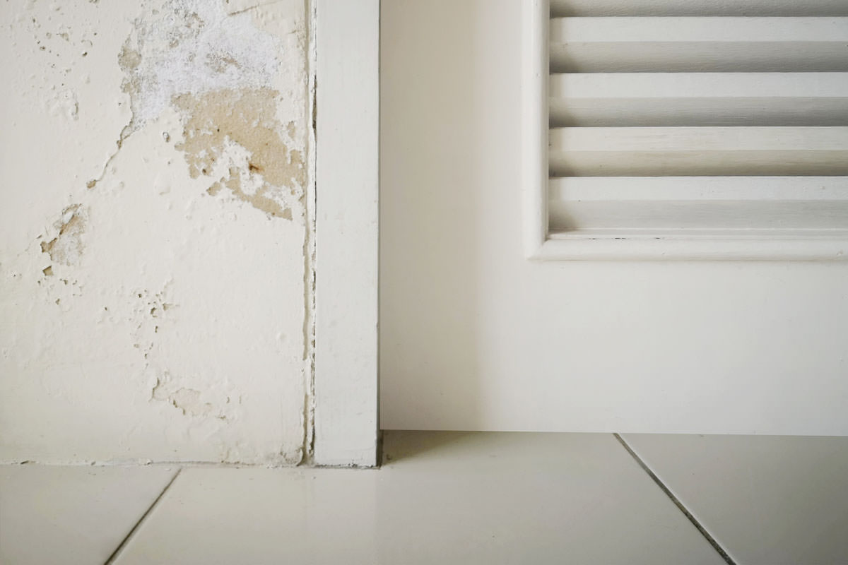 Excessive moisture can cause mold and peeling paint wall such as